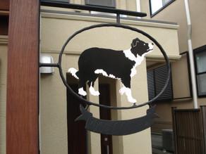 愛犬のためのウッドデッキテラスとアイアンのオーナメント。横浜市泉区(ボーダーコリー)