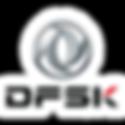 DFSK Logo.png