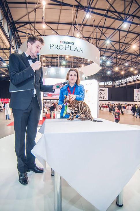 Pro Plan Grand Prix 2017 🏆 #proplangrandprix 11-12 ноября