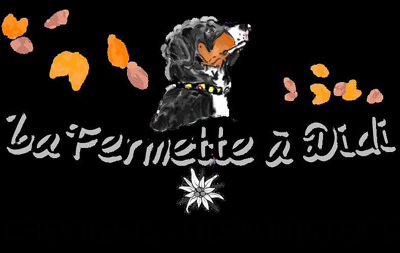 Logo 2019-2.png