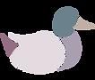 duck_transparent.png