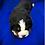 Thumbnail: Kimi's Boy