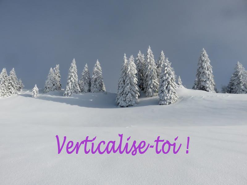 Jolis nos sapins sous la neige !