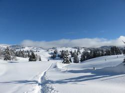 Le Jura blanc