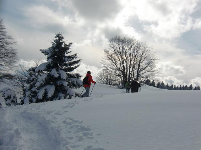Zen la raquette Jura