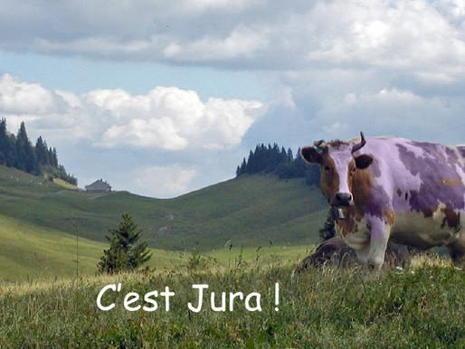 La vache violette