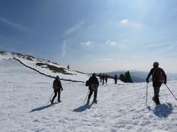 Sur la Dole -Jura-