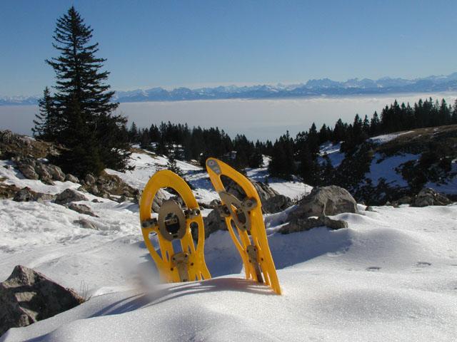 Pause raquette Jura)site