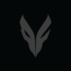 FNX Logo.png