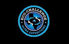Eco.Challenge.award.logo-01.png