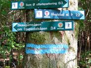Utfart til skog og sjø