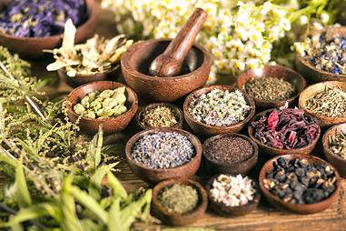 ayurveda-plantes-medicinales-hygiene-de-vie