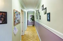 Animal Medical Center 5