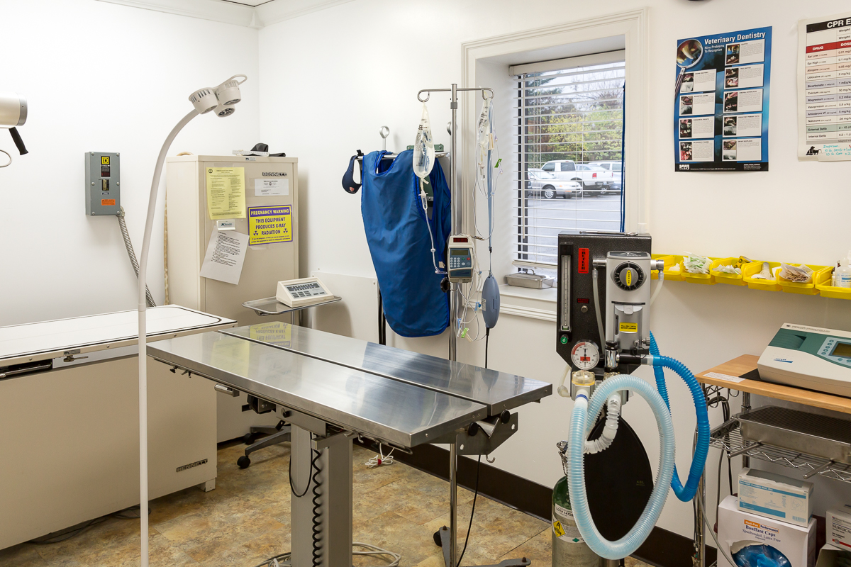 Animal Medical Center 1
