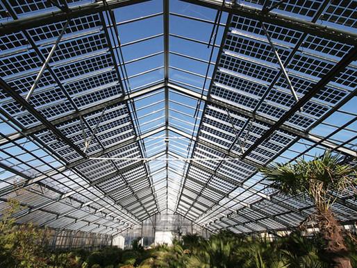 Painéis solares bifaciais representarão 17% das instalações globais anuais até 2024
