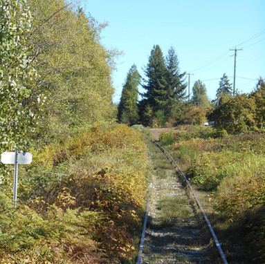 Coombs track mowing September 2015 057-m