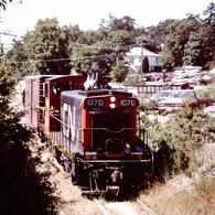 CN on the Saanich line.JPG