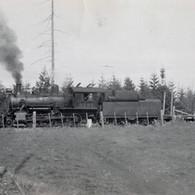 Train at Coombs.jpg