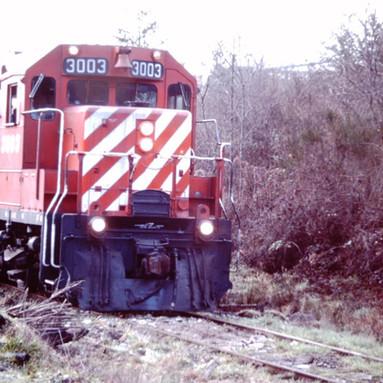 CP 3003, VICTORIA PLYWOOD SPUR, 1989.JPG