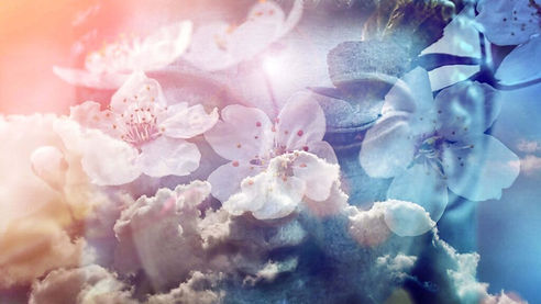 Ascended-Masters-Page-Header-1600x900-1-