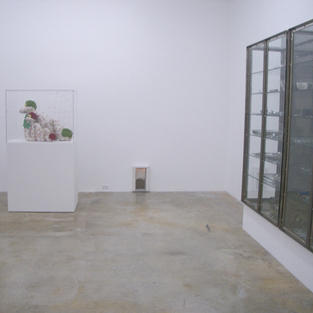Wrong Gallery Installed at the Rubell Family Collection with Damian Hirst and Jeff Koons