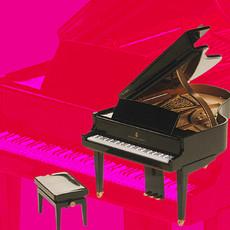 Steinway Piano for Kaleidoscope House