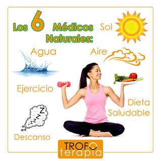 LOS 6 MÉDICOS NATURALES