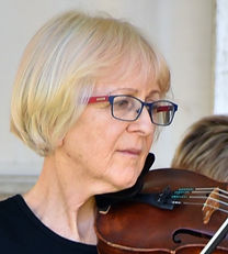 Director fiddler