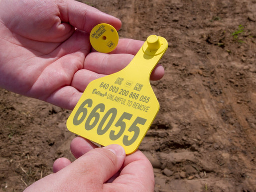 U.S. CattleTrace unveils RFID tag store