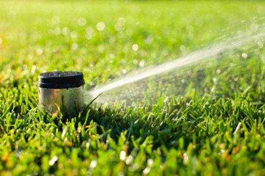 McDonough-GA-Irrigation.jpg