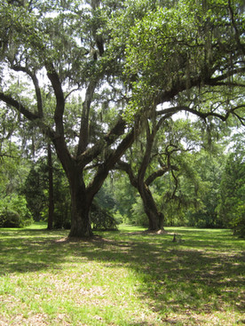Three Friars, Seven Oaks and Two Brothers