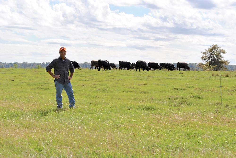 Lowcountry cattleman Dr. David Baird