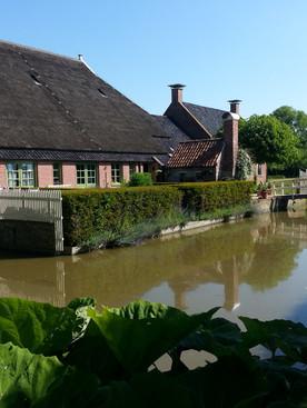 Friesland:  A Dutch garden delight