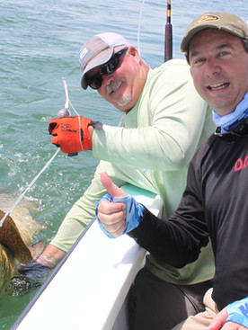 Going for goliath grouper on the Gulf