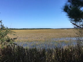 Lowcountry to the limit: Caw Caw Interpretive Center