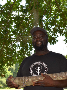 'Bubba' Green's mushroom homecoming:  Re-rooted at The Woodlands Nature Reserve
