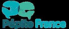 pépite_france-removebg-preview.png