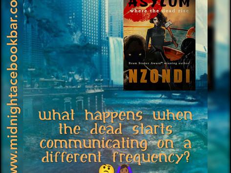 A BOOK BAR REVIEW: LIPSTICK ASYLUM by NZONDI