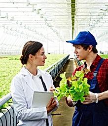 greenhouse_2.jpg