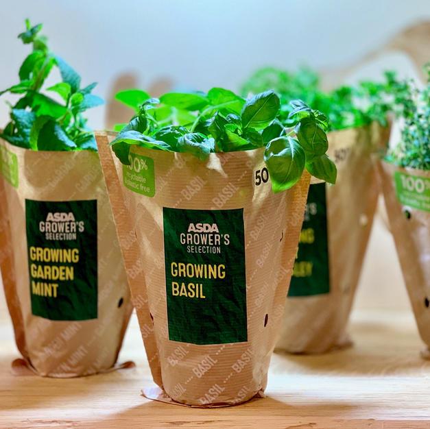 Herbal Plant Sleeves