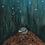Thumbnail: Ensomme dyr 2 - Ugler i mosen