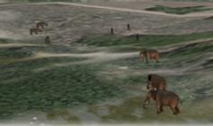 Anti Poaching UAS Simulation Application