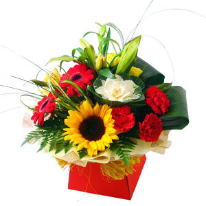 Flowers in Vox