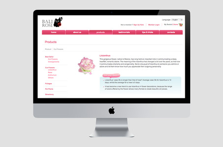 Bali Rose Website Product Page Preview