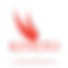 Kineto_logo-01.png