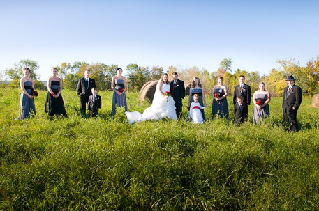 wedding party in field.JPG