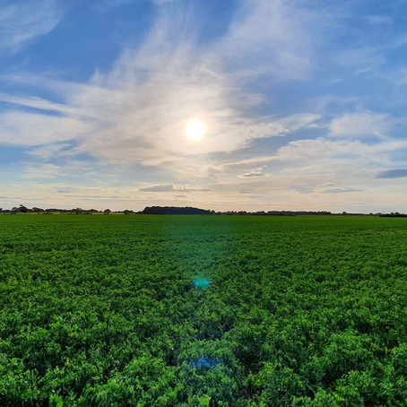 Sustainable Catchments Humber Project Announced
