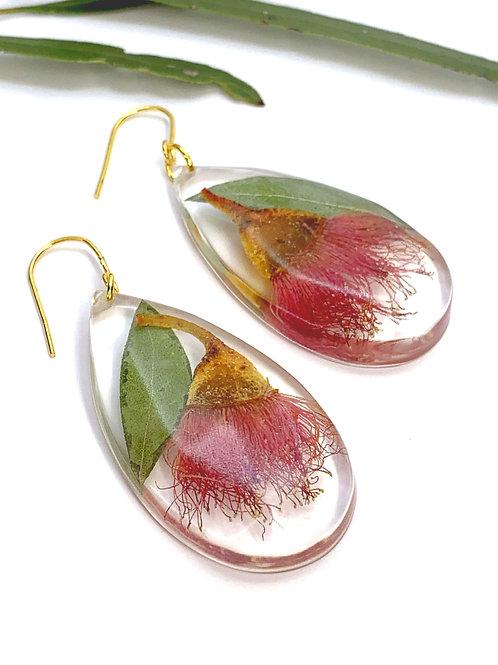 Pink Flowering Gum Teardrop Earrings