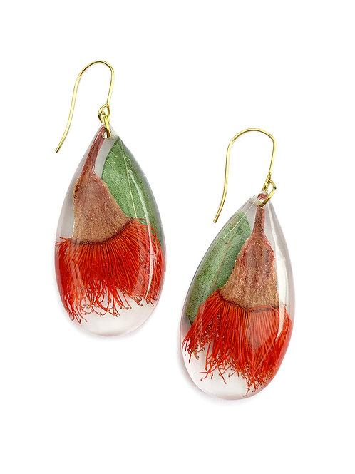 Orange Flowering Gum Earrings ○ Teardrop