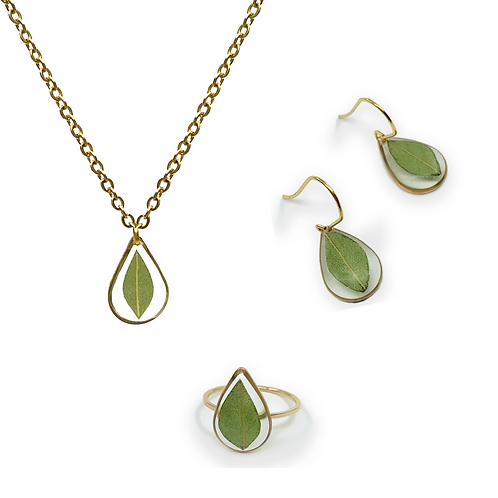 Eucalyptus ○ Teardrop Set